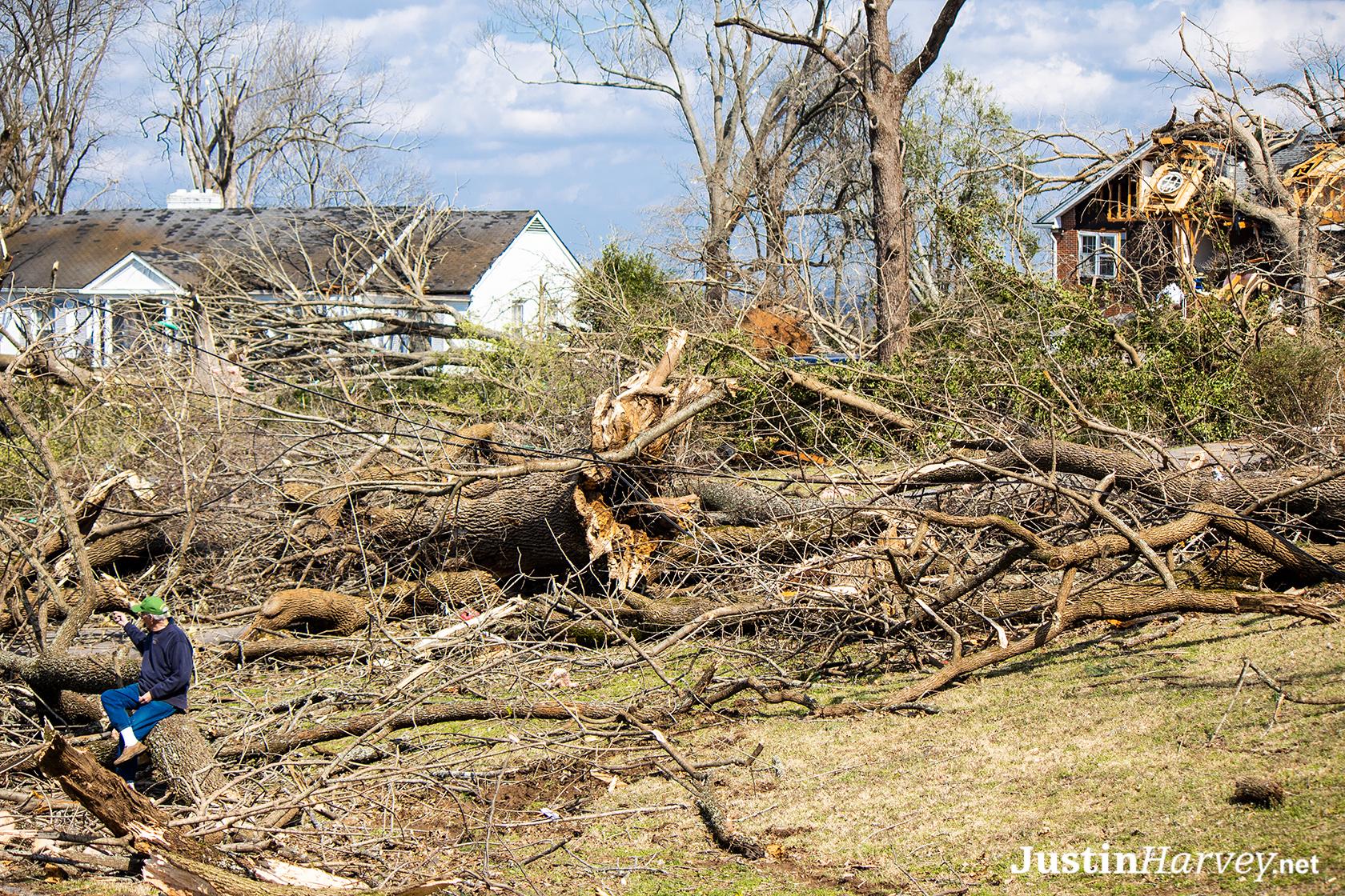 old-man-on-stump329A0267